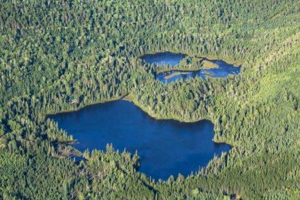 De nombreux lacs et forêts vue des airs