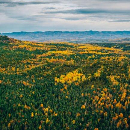 Des paysages exceptionnels créés par un événement historique majeur.